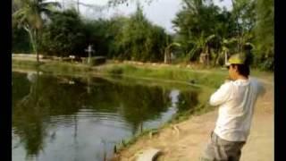 ตกปลา บ่อสร้าง 010352