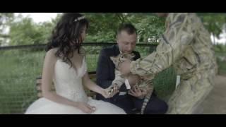 свадебная церемония в тайгане промо
