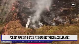 Forest fires in Brazil as deforestation accelerates