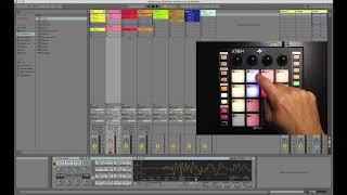 PreSonus ATOM and Ableton Live: Live Modes