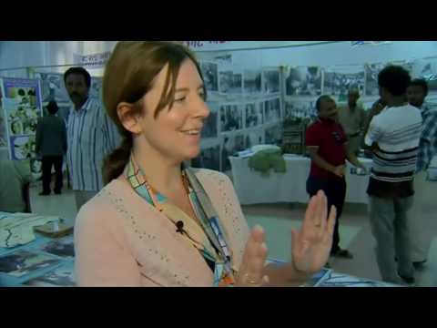 Inside Eritrea  Bras, biros and backward shoes in war exhibit   BBC News
