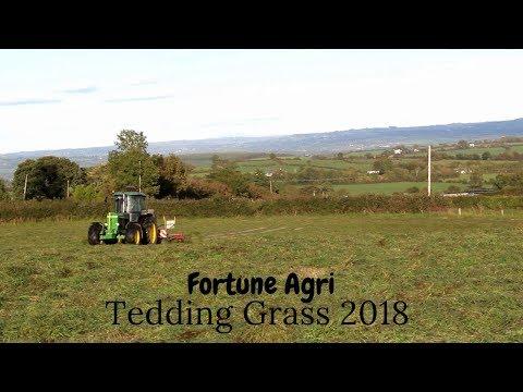 Tedding Grass 2018-Fortune Agri