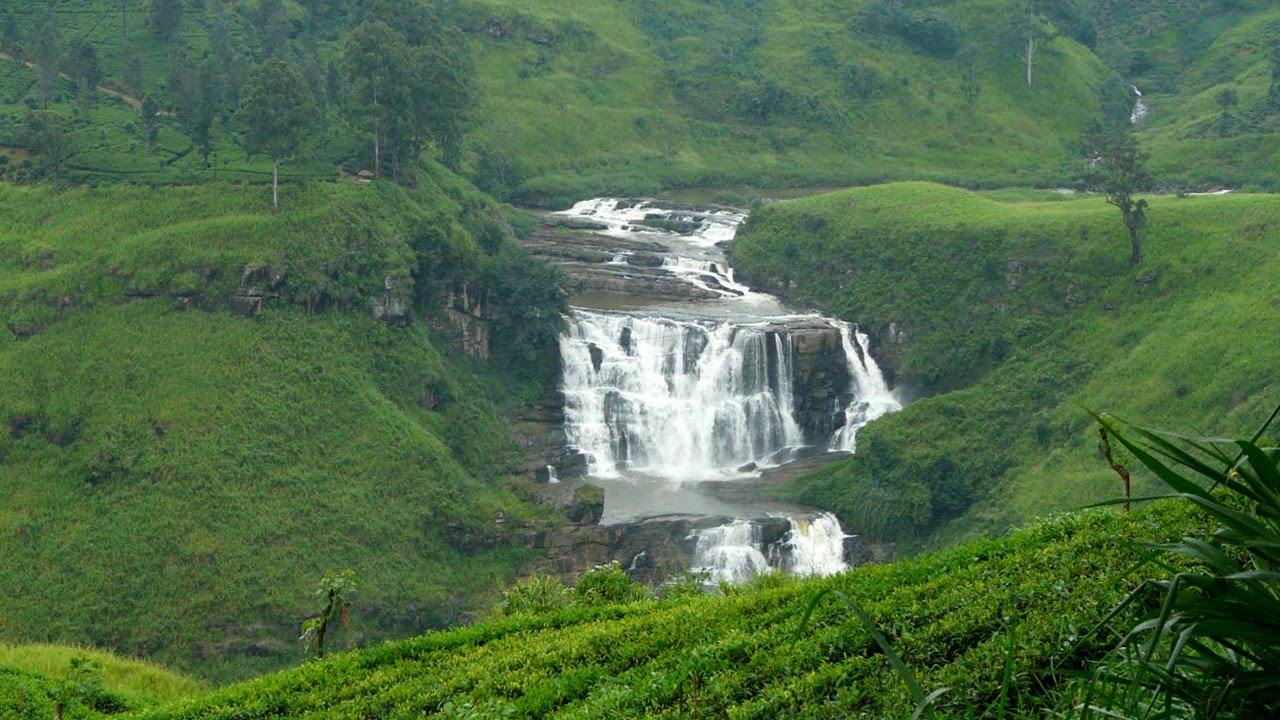 sri lanka tourism statistics 2016 pdf