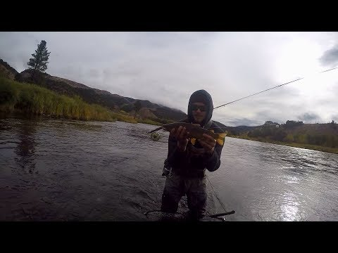 Wading And Fly Fishing The Green River In Utah
