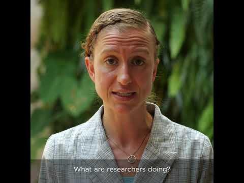Видео: COVID-19 - FAQ answered