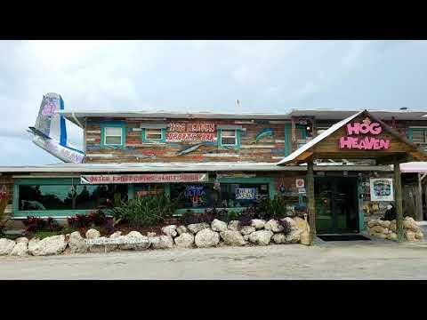Hog Heaven In Islamorada, Florida Keys --