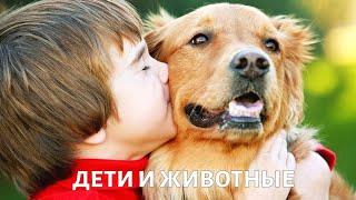 Фактор роста. Дети и животные | Телеканал «Доктор»