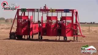 Trabajos de Caballos en 3 Amigos de Phx, Az. 14 de Abril 2018