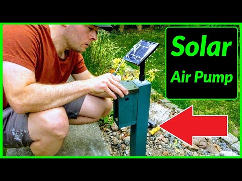 How To Install A Solar Powered Air Pump Into Your Pond + Aerate & Oxygenate Your Water