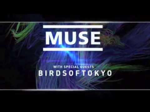Muse Adelaide TVC 30A
