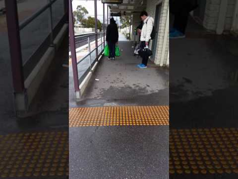 At Preston Train Station, an angry man on the phone with myki call centre staff