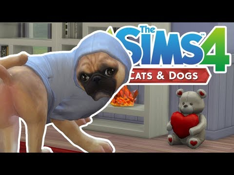how to get pet pregnant sims 4