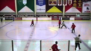 Geez v Nordic Stars Nationals 2014 USA Broomball B Championship