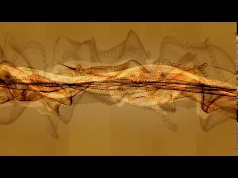 Free HD Wedding background, Free download motion graphics, Vfx