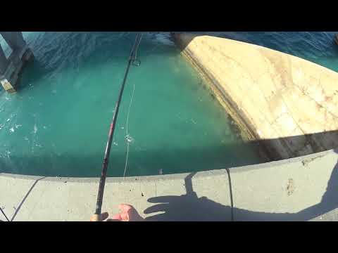 Bridge Fishing In The Keys: Duck Key