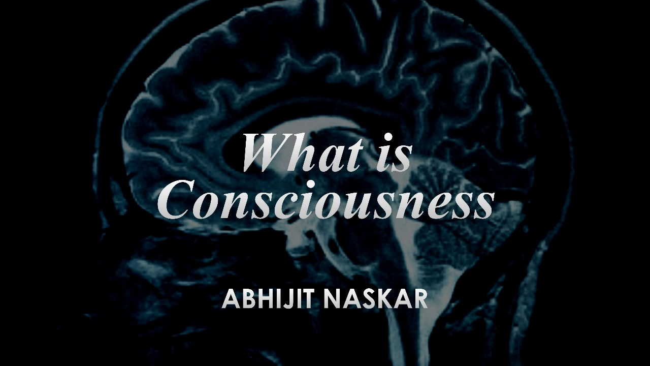 What is Consciousness - Abhijit Naskar explains - YouTube