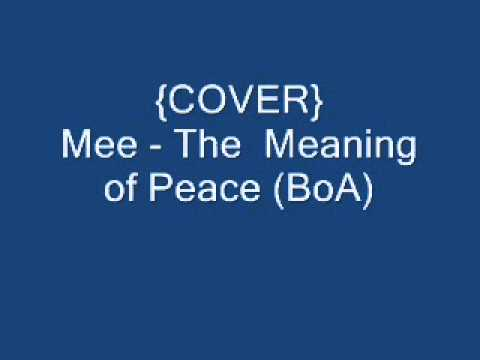 {COVER} BoA   The Meaning Of Peace