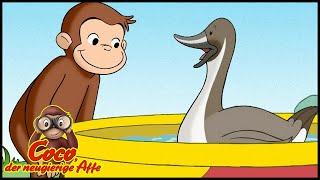 Coco der Neugierige 🐵  111 Die Tümpelenten 🐵 Ganze Folgen 🐵 Cartoons für Kinder🐵Staffel 1