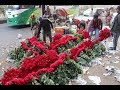 Wholesale Flower Market Sahbag Dhaka