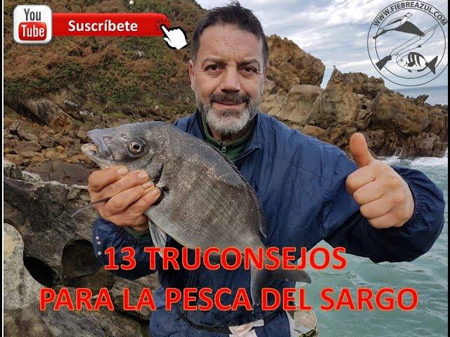 13 TRUCOS Y CONSEJOS PARA LA PESCA DEL SARGO