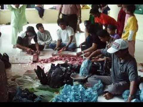 Qurban in Kampung Bugis Tanjung Pinang