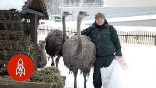 The Man Who Adopted a Zoo