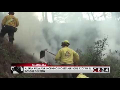 Fuego afecta reserva Maya del bosque Petén en Guatemala