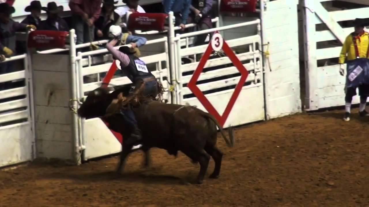 Lo Mejor Del Rodeo Americano En Fort Worth Texas 2015