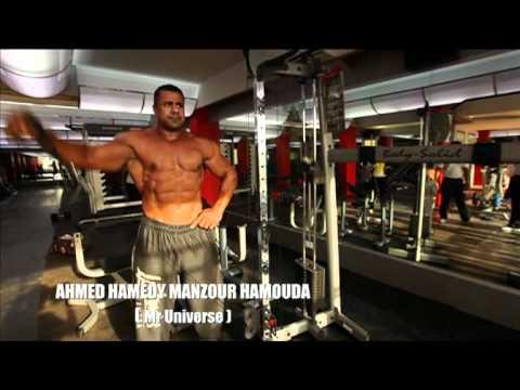 Afton Fitness Equipments Corporate Presentation