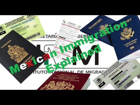Chapala Mexico INM Immigration Explained