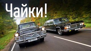 Чайки ГАЗ-13 и ГАЗ-14: лучшие автомобили СССР?