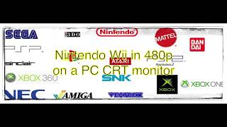 Nintendo Wii 480p on a VGA CRT monitor with Mayflash VGA cable.