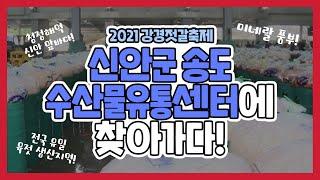 [2021 강경젓갈축제] 신안군 송도 수산물유통센터에 …