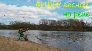 Рыбалка на ФИДЕР 2021 Ловля на фидер весной на реке