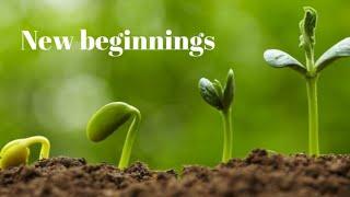 3rd Jan 2021   New beginnings