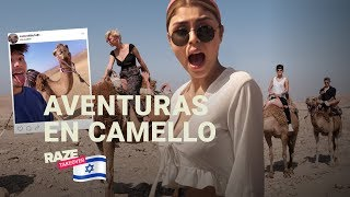 Pautips, PaisaVlogs, Sebas, Juana y Mario Ruiz pasean en camello en Israel   Raze Takeover Israel