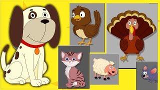 животное звук песня | Дети рифмы | детский стишок | Learn Sound | Kids Songs | Animal Sound Song