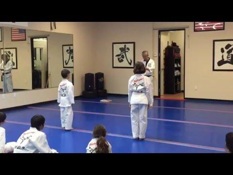 Taekwondo White Belt Test - World Taekwondo Center Scottsdale 2016 HD