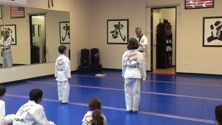 Taekwondo White Belt Test - World Taekwondo Center Scottsdale 2016 HD