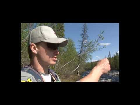 Short video about Pontoon 21 Custom Rods Psychogun, Seven & Half and Pontoon 21  Spinners...