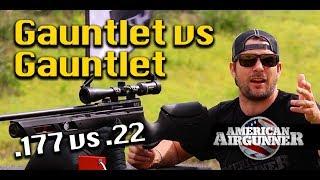 Umarex Gauntlet 177 vs 22 Air Rifle Gun Review plus Racoon Hunt