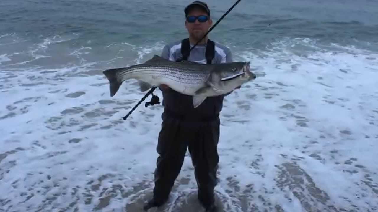 2015 nj fall run striped bass youtube for Surf fishing nj license
