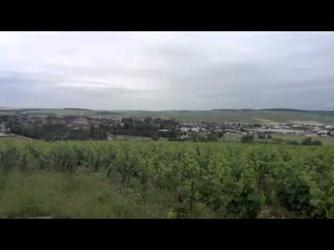 Tour of Chablis Grand Cru with Domaine Louis Michel