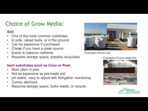 Cannabis Greenhouse Growing Methods for Production & Profitability