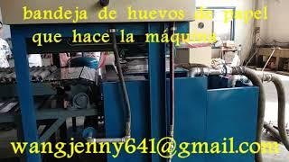 máquina de fabricación de bandeja de huevos de papel de desecho-whatsapp:0086-15153504975