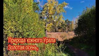 Челябинск Золотая осень природа южного Урала изумительно прекрасна 21 09 2021г