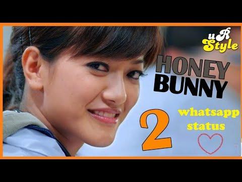Honey Bunny whatsapp status