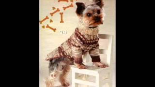 Вязаная одежда для кошек и собак