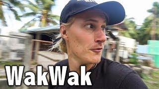 Siquijor- Lugar Sa WakWak // Philippines Travel Vlog 11