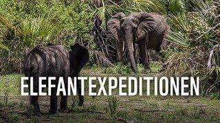 WWF FACEBOOK TV - ELEFANTEXPEDITIONEN